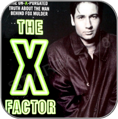 THE X FACTOR - THE UNAUTHORIZED BIOGRAPHY OF D. DUCHOVNY